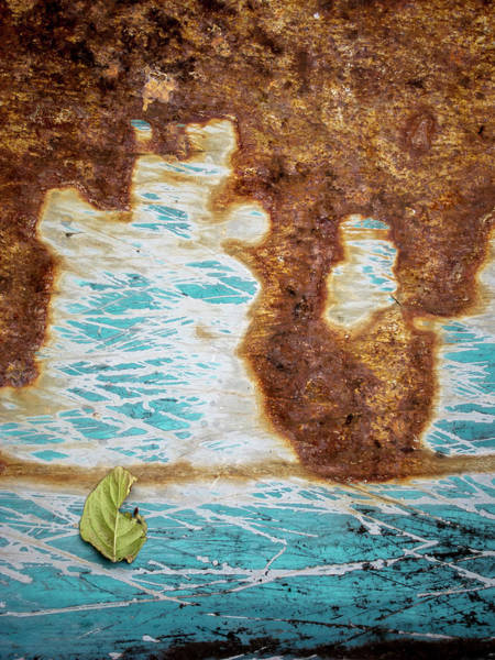 Photograph - Torn Leaf On Rusted Metal by Mary Lee Dereske