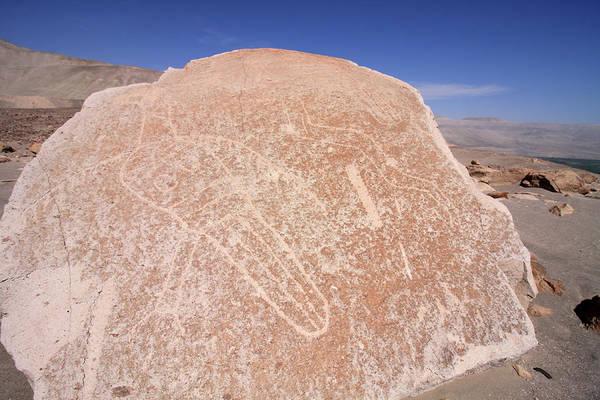 Photograph - Toro Muerto Petroglyph 06 by Aidan Moran