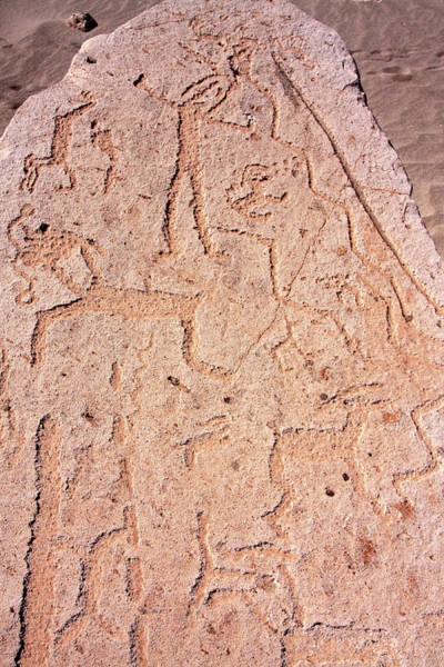 Photograph - Toro Muerto Petroglyph 08 by Aidan Moran