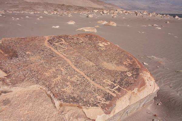 Photograph - Toro Muerto Petroglyph 16 by Aidan Moran