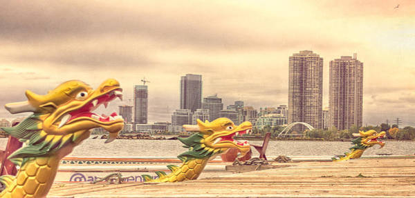 Photograph - Toronto Dragon Boats by Garvin Hunter