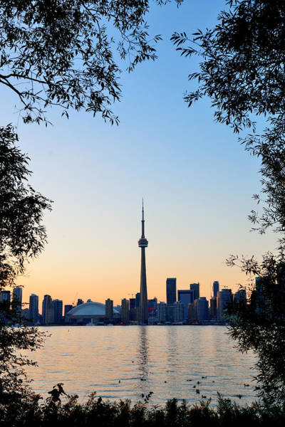 Photograph - Toronto Sunset by Songquan Deng