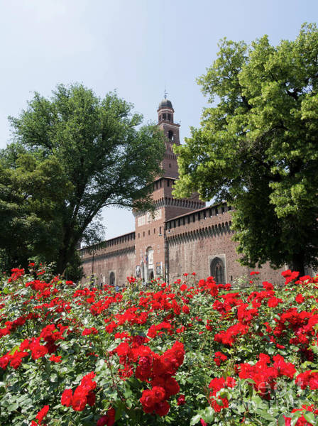 Wall Art - Photograph - Torre Del Filarete At Sforza Castle Milan Italy by Louise Heusinkveld