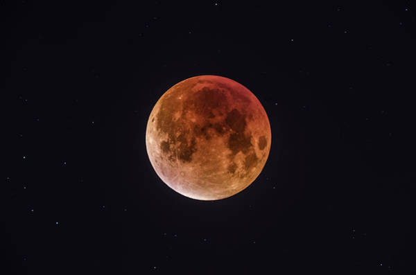 Blood Moon Wall Art - Photograph - Total Eclipse Of The Moon by Bartosz Wojczynski
