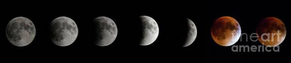 Wall Art - Photograph - Total Lunar Eclipse - 2015-september 28 by Robert McAlpine