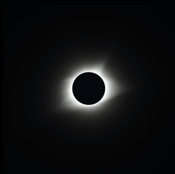 Photograph - Totality 2017 by Paul Rebmann