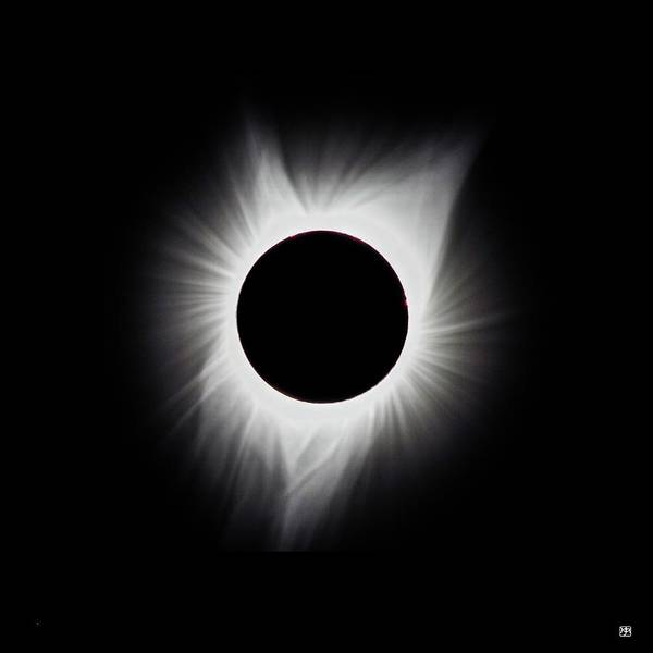 Photograph - Totality by John Meader
