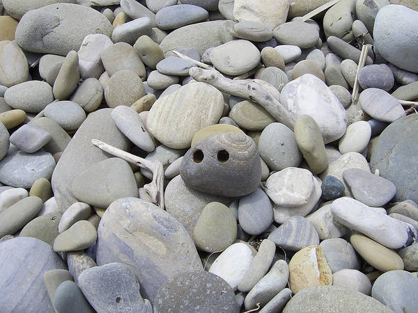 Photograph - Toting Rocks - In The Eyes Of The Beholder by Barbara St Jean