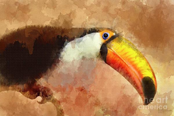 Mixed Media - Toucan by David Millenheft