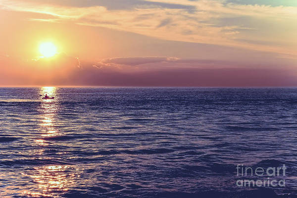Wall Art - Photograph - Touched By The Sun by Colleen Kammerer