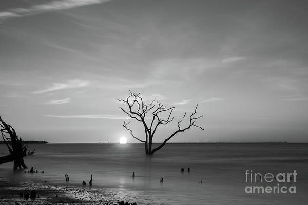 Wall Art - Photograph - Touching The Horizon Bw  by Michael Ver Sprill