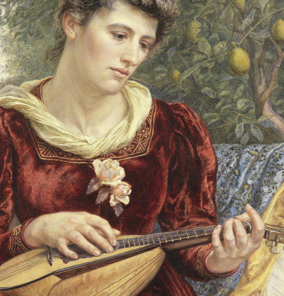 Strum Wall Art - Painting - Touching The Strings by Edith Martineau