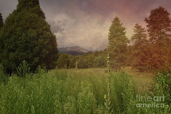 Photograph - Toward Pikes Peak by Charles Owens