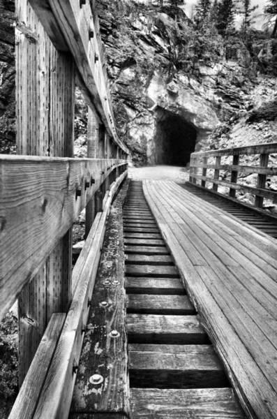 Photograph - Toward The Tunnel by Tara Turner