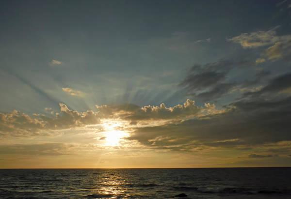 Photograph - Towards The Heavens by Pamela Walton
