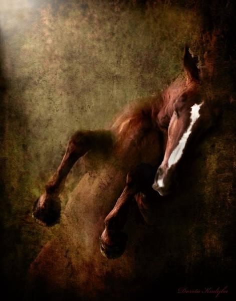 Horse Love Photograph - Towards The Light by Dorota Kudyba