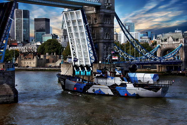 Photograph - Tower Bridge And Boat by Anthony Dezenzio