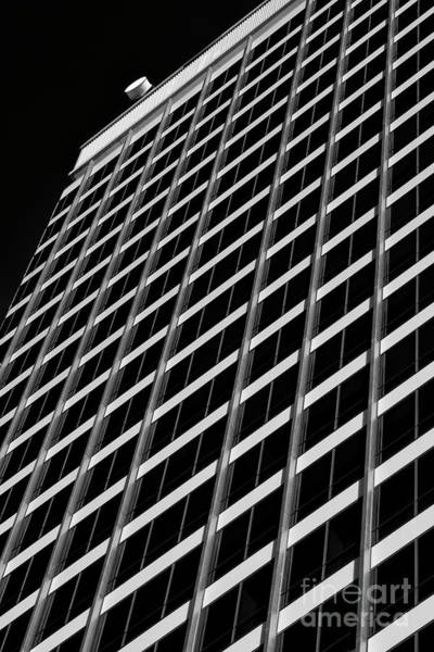 Photograph - Towering by Patrick M Lynch