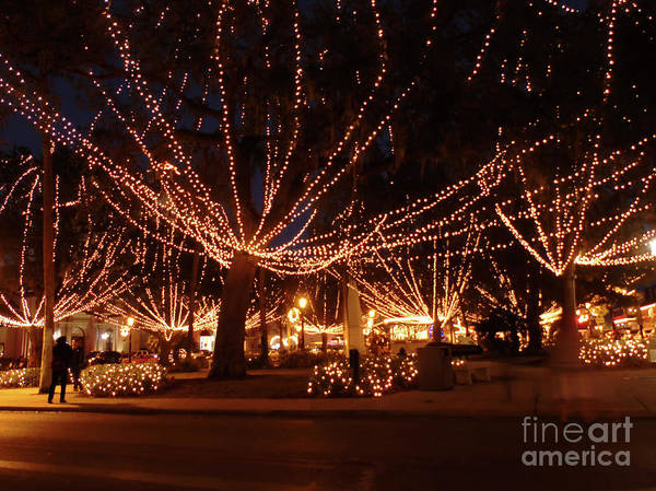 Flagler Photograph - Town Center Night Of Lights by D Hackett