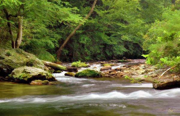Photograph - Townsend Branch 1 by Sam Davis Johnson
