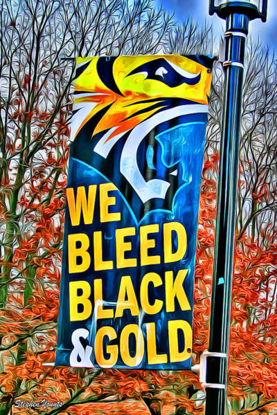 Wall Art - Digital Art - Towson Tigers Black And Gold by Stephen Younts