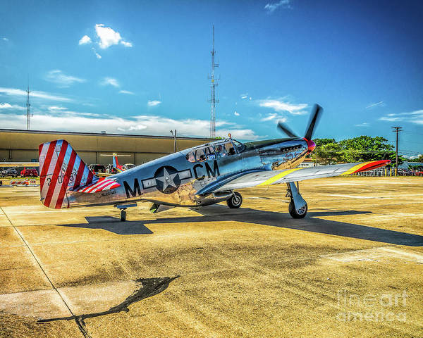 Photograph - Tp-51c Mustang Betty Jane by Nick Zelinsky