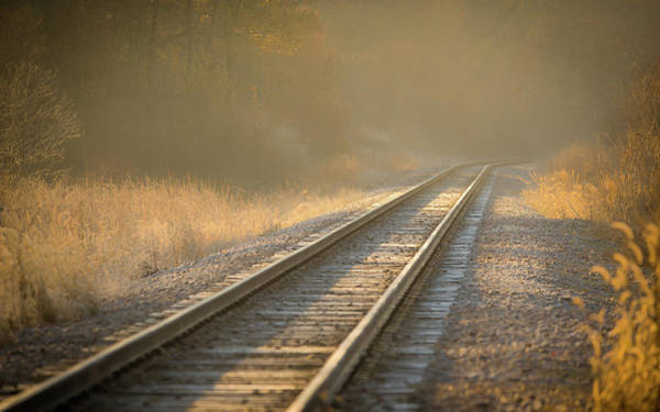 Photograph - Tracks by Brad Bellisle