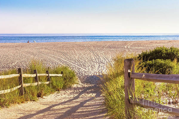 Wall Art - Photograph - Tracks In The Sand - Cape May by Colleen Kammerer