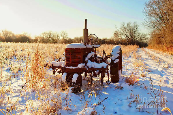 Photograph -  Tractor In Frosted Field  by Tom Jelen