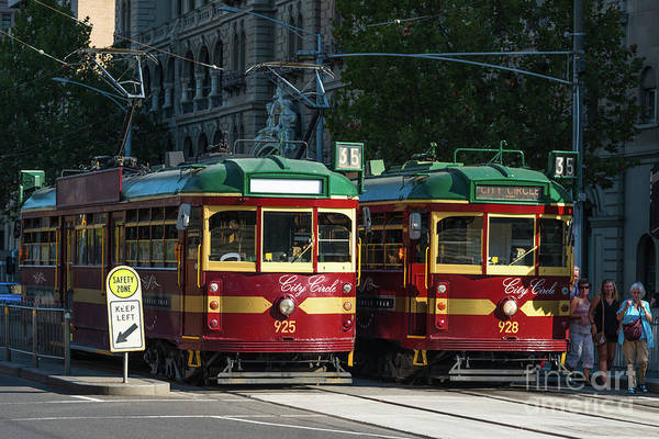 Straight Ahead Wall Art - Photograph - Traditional Trams In Melbourne by Andrew Michael