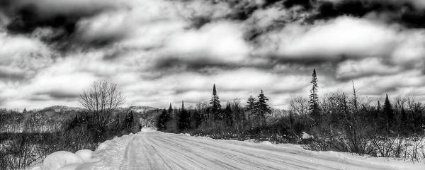 Photograph - Trail 1 In Old Forge by David Patterson