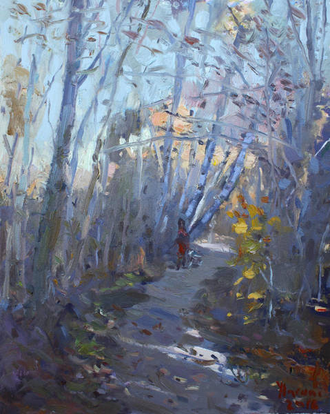 Area Painting - Trail In Silver Creek Valley by Ylli Haruni