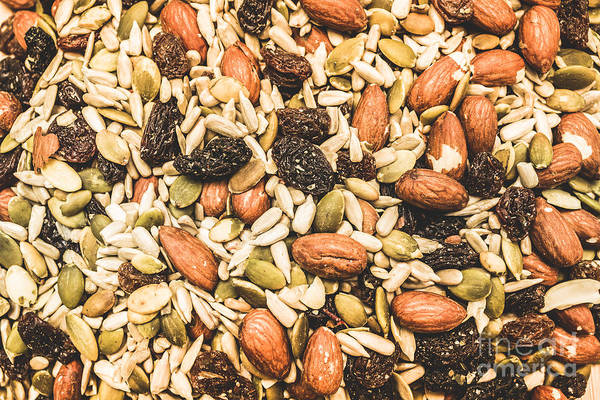 Sunflower Seeds Photograph - Trail Mix Background by Jorgo Photography - Wall Art Gallery