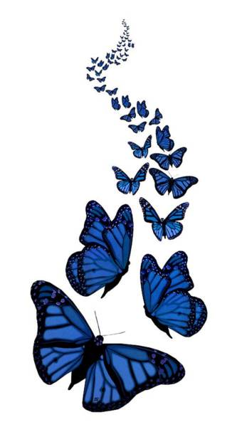 Digital Art - Trail Of The Blue Butterflies Transparent Background by Barbara St Jean