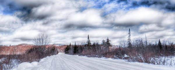 Photograph - Trail One In Old Forge by David Patterson