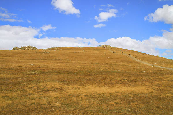 Photograph - Trail Ridge Path by Dan Sproul
