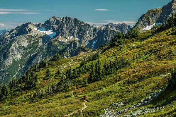 Photograph - Trail Roaming by Doug Scrima