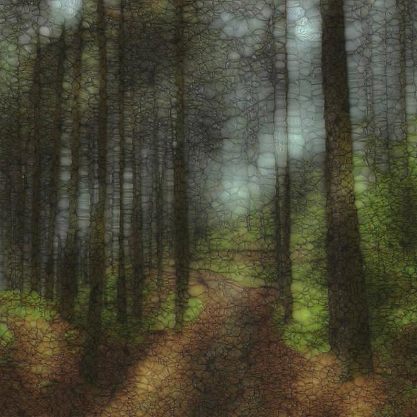 Wall Art - Painting - Trail Series 6 by Jack Zulli