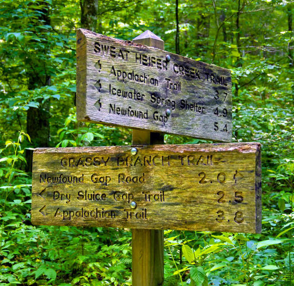 Wall Art - Photograph - Trail Sign Smnp by David Lee Thompson