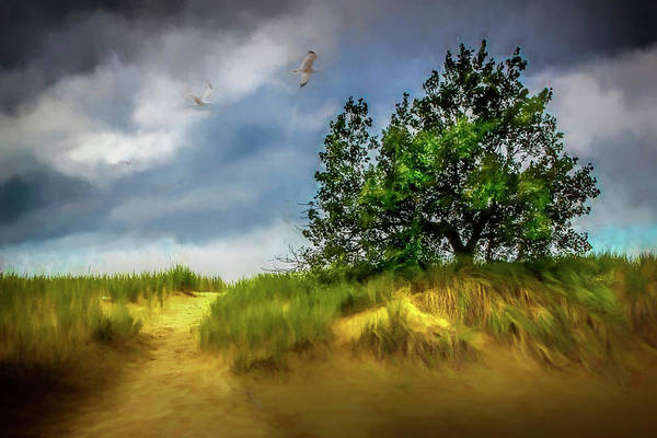 Photograph - Trail Through The Dunes Painterly Version by Randall Nyhof