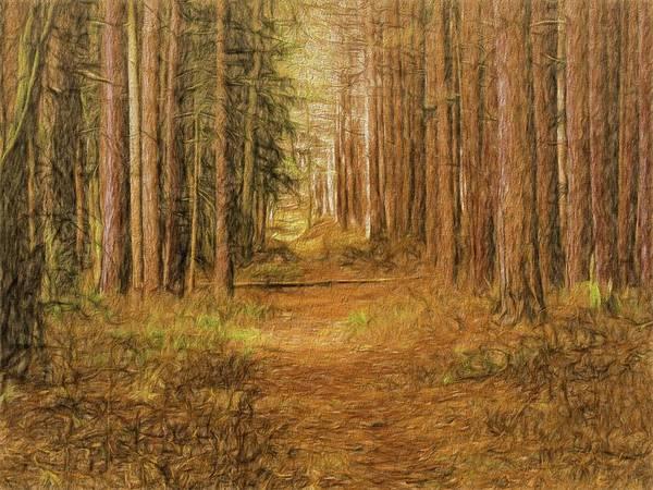 Digital Art - Trail Thru The Pines by Rusty R Smith