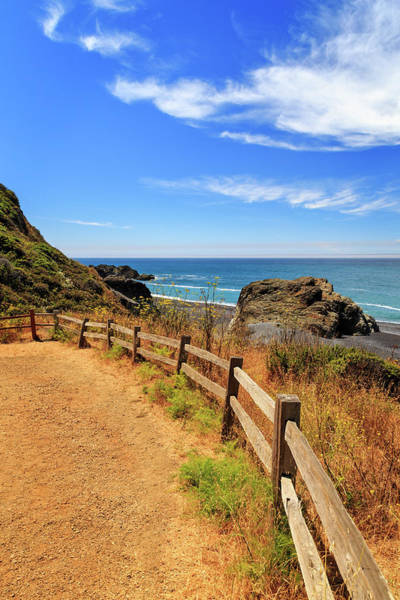 Photograph - Trail To The Lost Coast by James Eddy