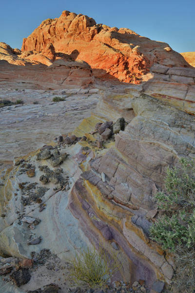 Photograph - Trail To The Top Of Wash 3 In Valley Of Fire by Ray Mathis