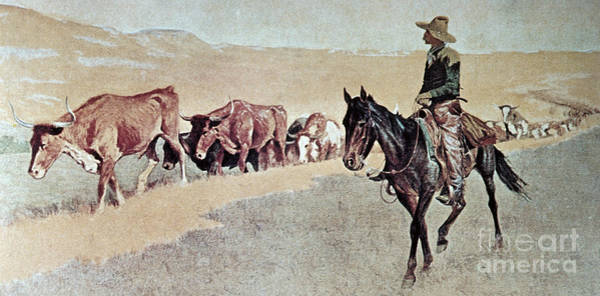 Longhorn Painting - Trailing Texas Longhorns by Frederic Remington