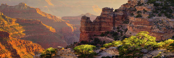 Grand Canyon Photograph - Trailside by Mikes Nature