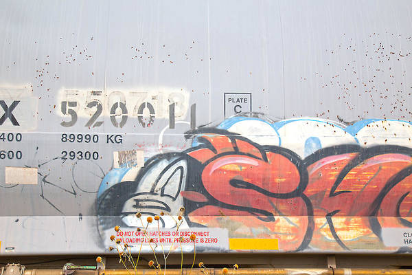 Photograph - Train Art by Dart and Suze Humeston
