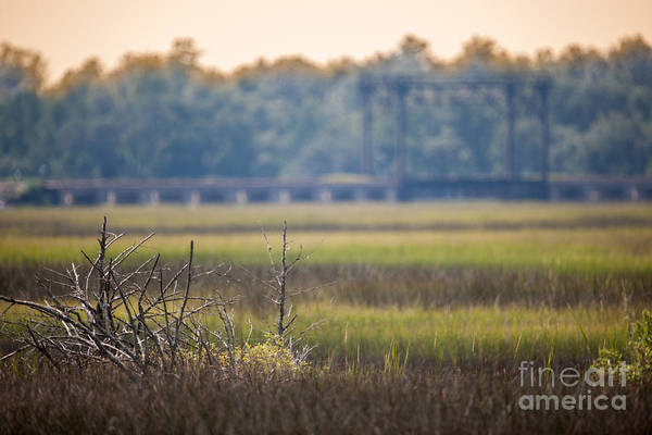 Photograph - Train Birdge Over The Marsh by Dale Powell
