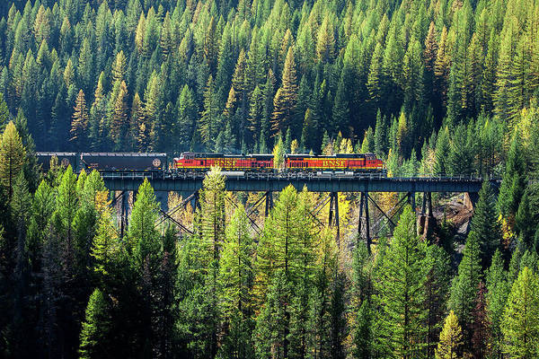 Trestle Photograph - Train Coming Through by Todd Klassy