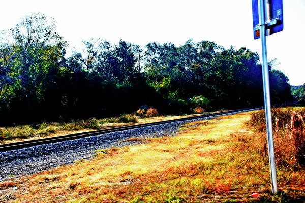 Photograph - Train Track At Green Cove Springs by Gina O'Brien
