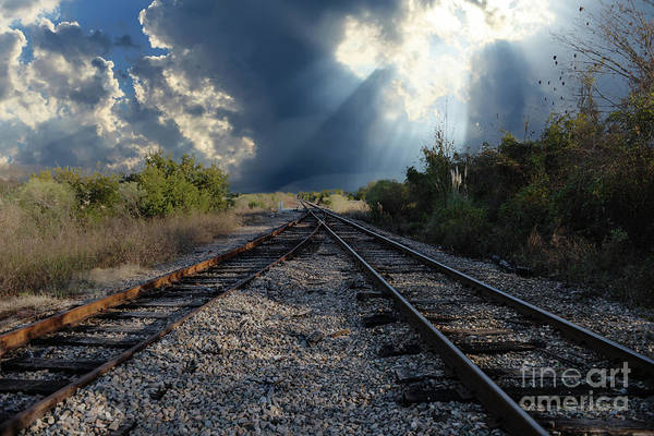 Photograph - Train Track Junction In Charleston Sc by Dale Powell